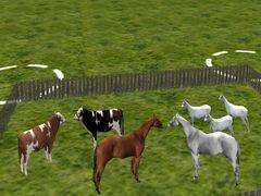 Zvířata Pack