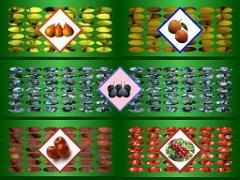 Ovoce na paletách