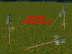 Borovice naklopitelná