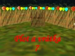 Venkovský plot s vrátky 7